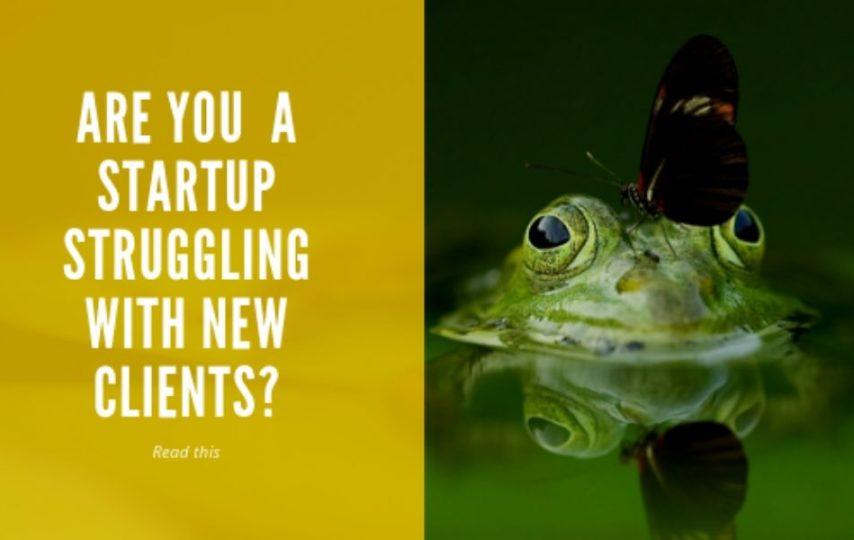 startup struggling