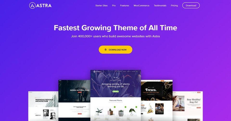 WordPress Theme Options