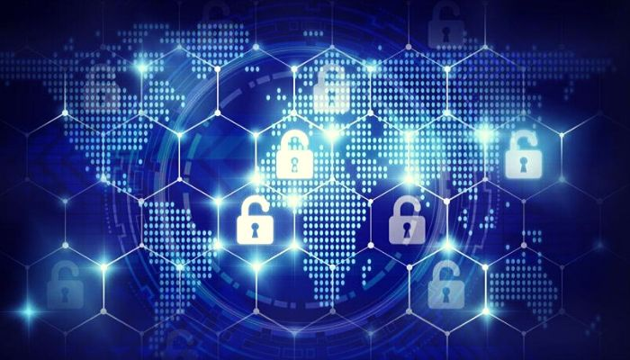 Protect Your Organization's Data