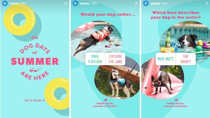 Chewy a pet food company, uses the instagram polls