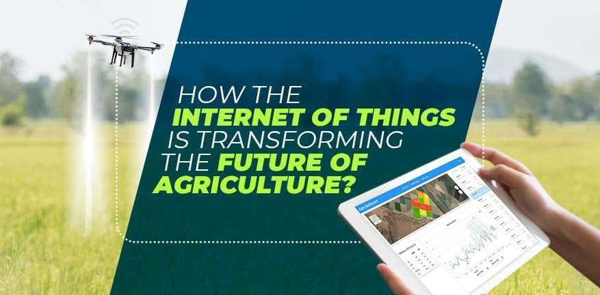Internet of Things is Transforming the Future of Agriculture